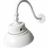 Gooseneck light available in white or black with 10-inch shade, curved attachment arm and photosensor.