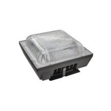 LED Canopy Light WTG-CNPS50W