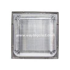 LED Canopy Light WTG-CNPS75W