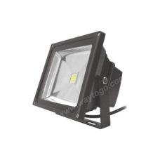 LED Flood Light WTG-FL30W277