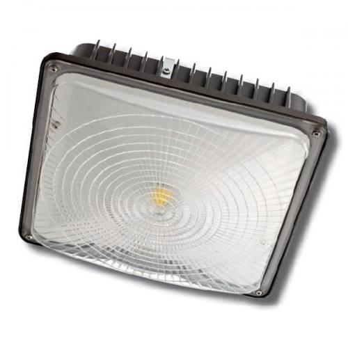 LED Canopy Light ECNCL45W
