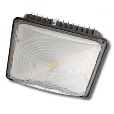 LED Canopy Light ECNCL80W