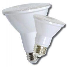 LED Light Bulb ECNPAR20